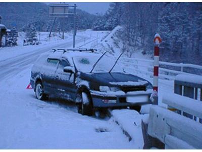 Фото с сайта comingbackalive.com