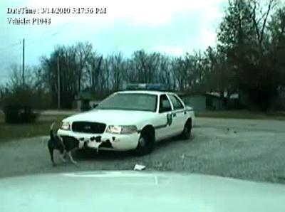 Кадр видео-записи из патрульного автомобиля полиции