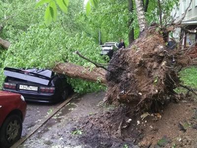 Циклон в столице сломал авто на150-200 млн руб
