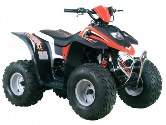 Stels ATV 100C