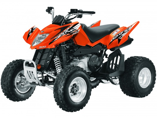 Arctic Cat 300 DVX