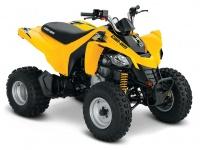 BRP DS 250